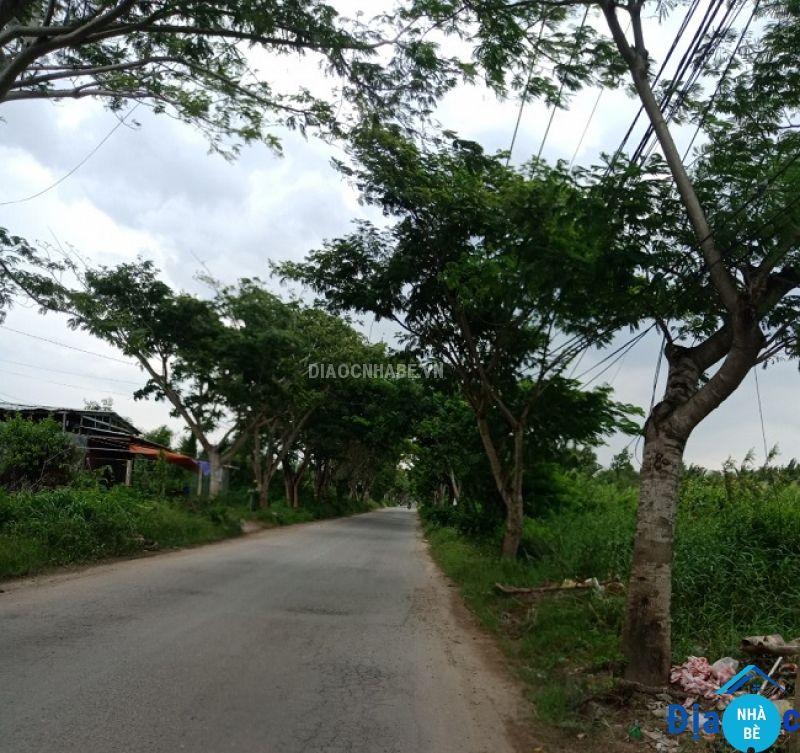 Đất lang đường 12 Long Thới Nhà Bè 2331m2