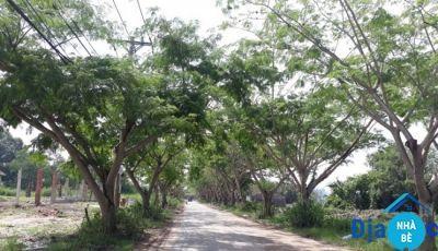 Bán đất mặt tiền đường Ngô Quang Thắm Long Thới Nhà Bè 1835m2
