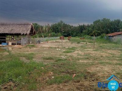 Bán đất mặt tiền đường Ngô Quang Thắm Nhà Bè 1605m2