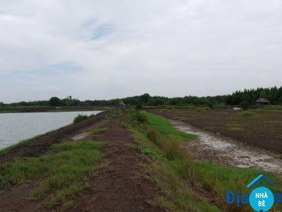 Đất thổ cư ấp Vĩnh Thạnh xã Phước Vĩnh Đông Cần Giuộc