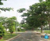 Bán lô đất A7 khu dân cư Phú Xuân Nhà Bè
