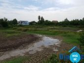 Đất lúa ấp Vĩnh Thạnh xã Phước Vĩnh Đông