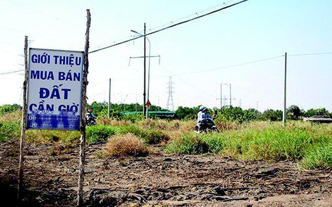 Đất nền vùng TP Hồ Chí Minh Chững lại chờ hồi sóng